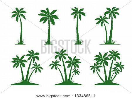 Vector Illustration of Palm Trees. Green Collection.
