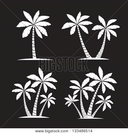 Vector Illustration of Palm Trees. White Collection.