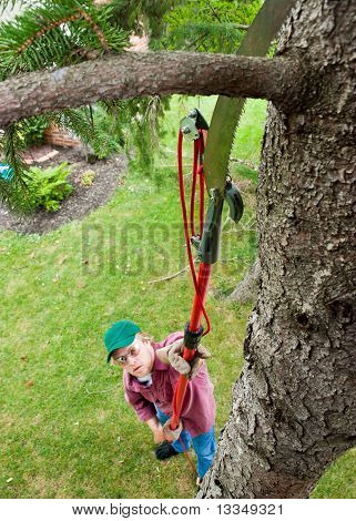 Man Cutting Tree Branch