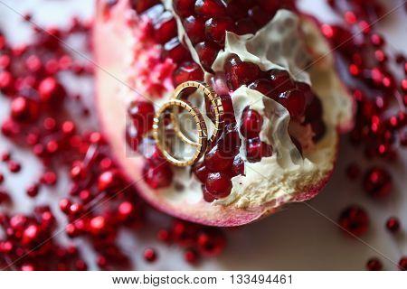 Two wedding rings on two Garnet. Two Fruit Garnet on white table