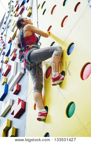 A young woman in safety harness is looking upwards while climbing on the artificial rock-climbing wall