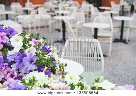 Colorful street petunia flowers in front of intimate outdoor restaurant