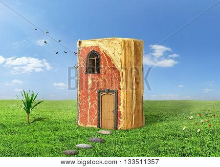 Concept of reading. Magic book with door and shining window. Book stay on grass birds fly out of the window. Concept of dreaming.