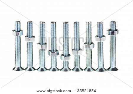 Group of screw-bolts isolated on white background. Standing out of the Level concept.
