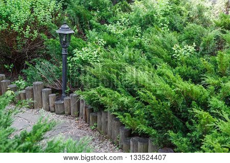 Beautiful landscape design, garden path with park light, wooden fence, evergreen bushes and shrubs in sunlight. Modern landscaping. Summer garden or park design.