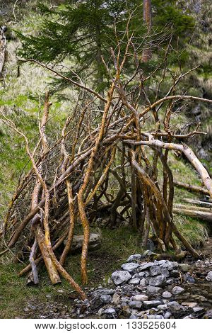 Rustic Lean-To Shelter Constructed from Tree Branches Beside Small Rocky Creek in Forest Setting
