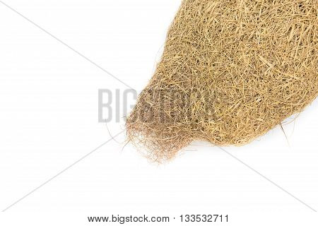 Baya weaver bird nest, skylark nests on white background.