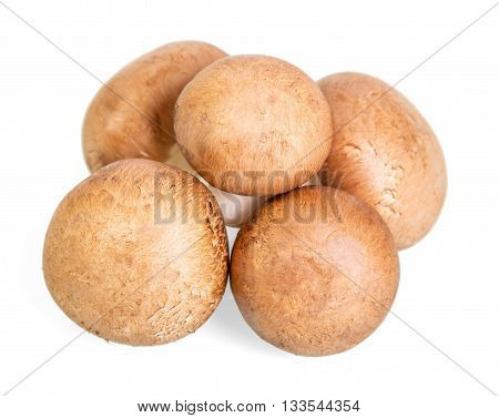 Brown champignons mushrooms close-up isolated on white background.