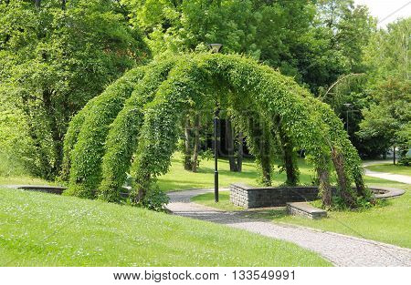 green wicker arbour in the park in summer