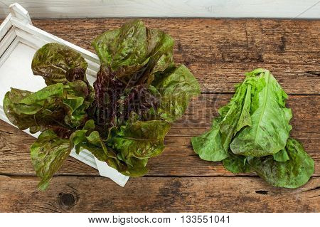 lettuces on a brown wooden table background