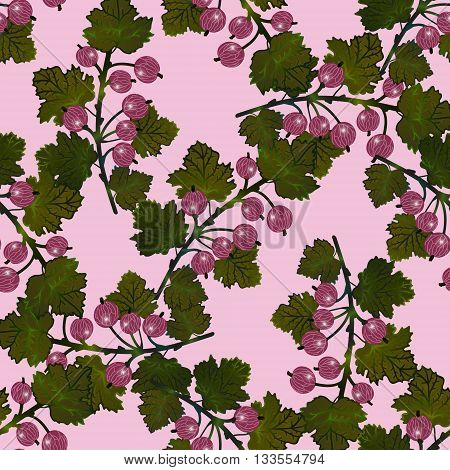 Vector gooseberry seamless pattern. Vector gooseberry vintage background. Tender rose berry background.  EPS 10