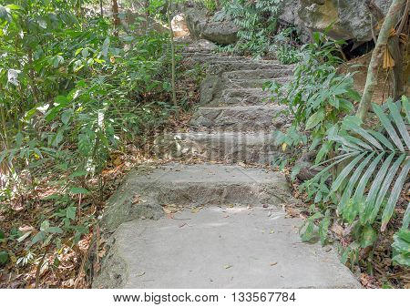 Stone walkway Steps leading to garden The walkway up the mountain trails view Nature.