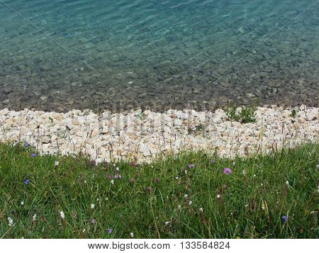Closeup of a crystal clear alpine lake in Alpe di Siusi South Tyrol - Italy