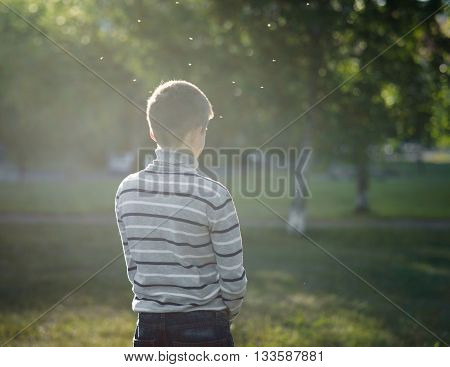 lonely boy teenager standing with his back lit by the sun in the Park and flying gnats