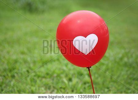 The balloon outdoor lawn