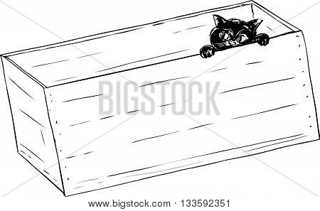 Outline Of Black Kitten In Crate