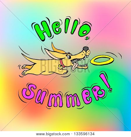 Funny summer greeting card with a cute dog catching flying disk. Vector illustration eps10