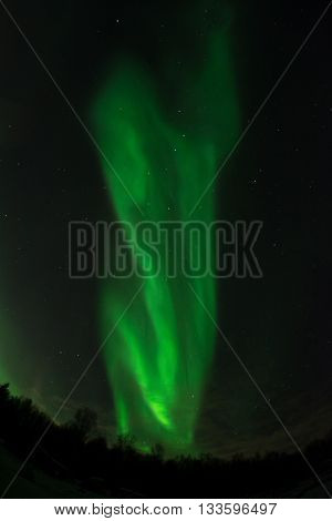 An aurora snakes its way to the heavens in twists of green light.