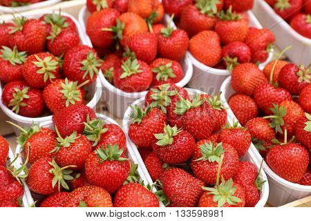 Boxes of fresh Strawberries on Farmers Market
