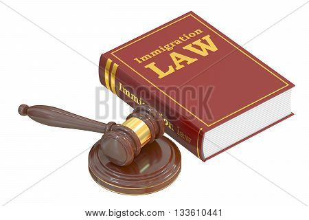Immigration Law concept with gavel. 3D rendering