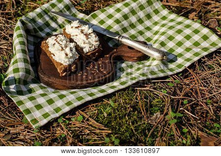 Two sandwiches with ricotta and seeds of flax on a picnic