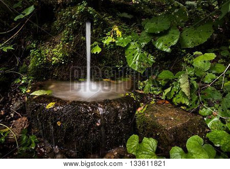 Little Water Spring Flowing into a Rocky Basin in the Forest