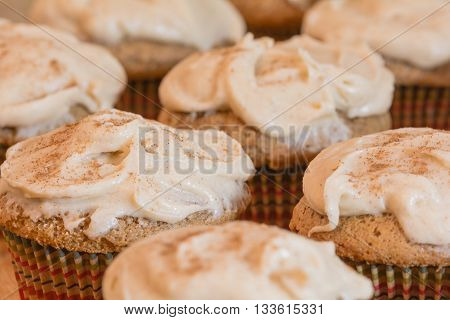 Frosted spiced cupcakes with cinnamon sprinkled on top.  Selective focus on main cupcake