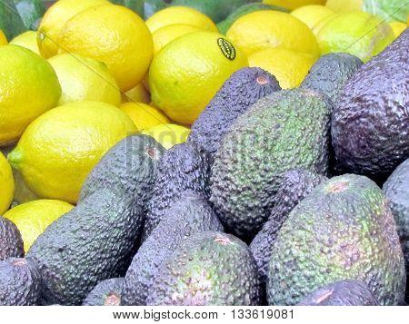 Avocado and lemons on bazaar in Tel Aviv Israel