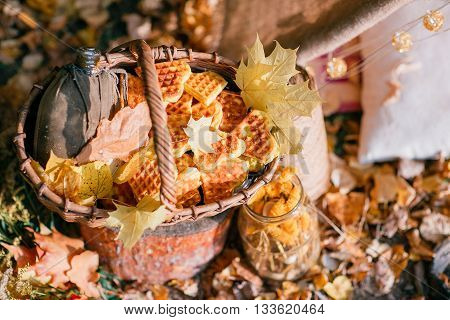 Fresh baked cookies in a basket. autumn forest.