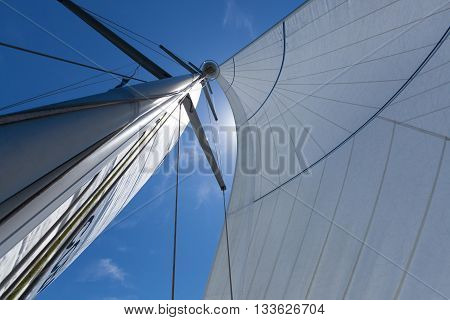 Mast and sail on a yacht, looking up