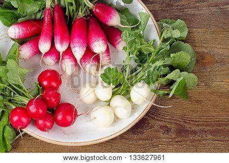 Bundle Of Organic Radishes