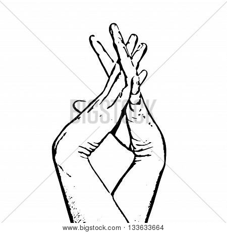 Sketch of entangled female hands. Black and white vector graphic. Tenderness and beauty. Hands in picture. Body part.