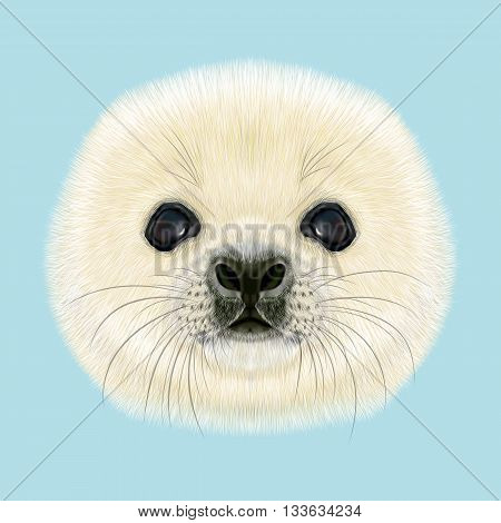Illustrated Portrait of Harp Seal Pup. Cute fluffy face of Harp Seal baby on blue background.