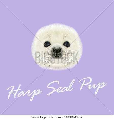 Vector Illustrated Portrait of Harp Seal Pup. Cute fluffy face of Harp Seal baby on violet background.