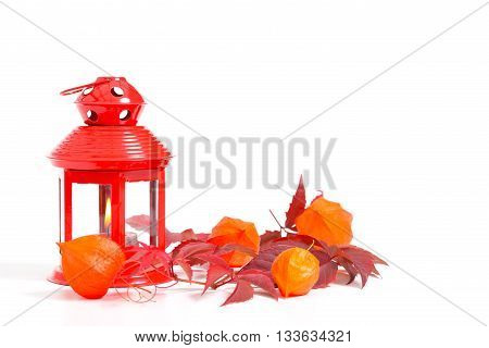 red lantern with lampiongblüten and vine leaves on a white background