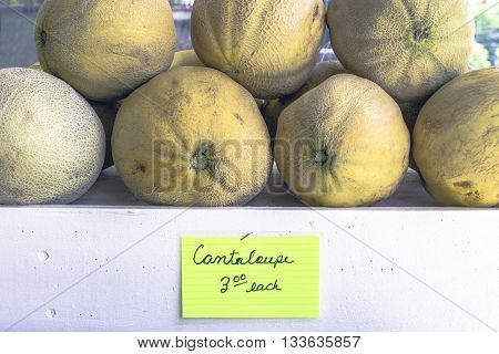 cantaloupe on display at a produce stand