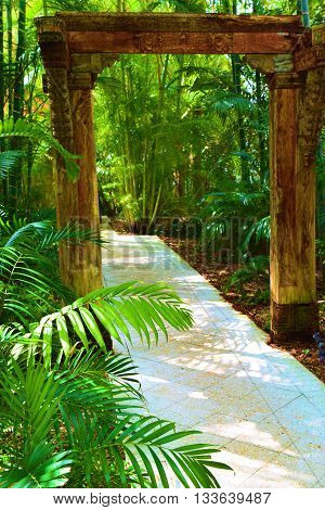 Walkway surrounded by tropical plants taken in a residential garden