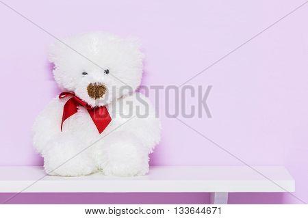 White teddy bear on shelf. White doll bear on the pink background.
