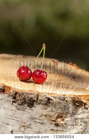 Closeup of the cherry on a stump