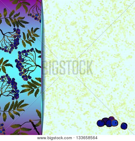 Frame of black rowan berries. Blue marble Background with rowan berries and leaves. For the greeting card, menu, invitation to wedding. Eps 10