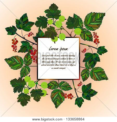 Frame with garden berries. Currant, gooseberry berries and raspberries leaves. Vector template card for your design. Invitation, save the date. Vector frame of different garden berries.