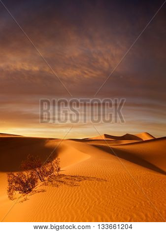 view of nice sands dunes at Sands Dunes National Park during sunset