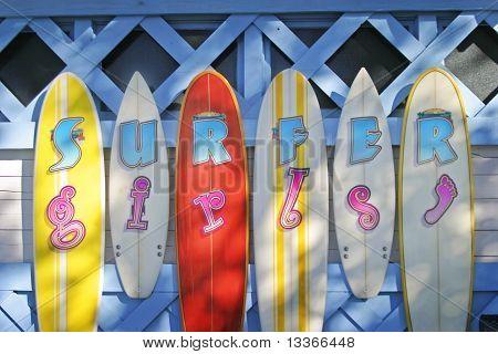 Surfer Girls Color