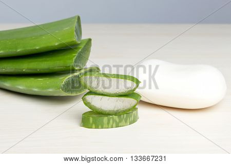 Fresh aloe vera leaves with soap, natural