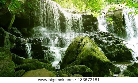 natural landscape scenery in green