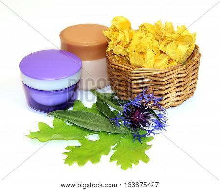 jar natural cream flower knapweed oak leaves woven wicker basket with dried petals of yellow flowers beauty kit concept isolated on white background. Feminine beauty industry health