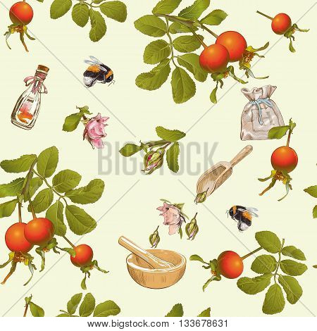 Vector herbal seamless pattern with rose hip berries.Background design for tea, homeopathy, herbal cosmetics, grocery, health care products. Best for fabric, textile, wrapping paper.