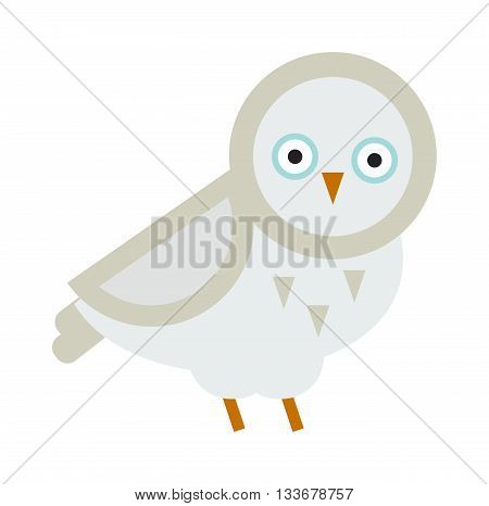 Owl white wild bird nature cartoon owl isolated. Owl flat bird character animal. Great horned Owl flat cartoon wildlife nature bird vector illustration.