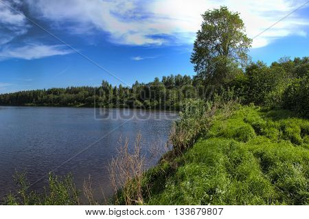 Spring landscape of the shores of the lake with bright blue sky.
