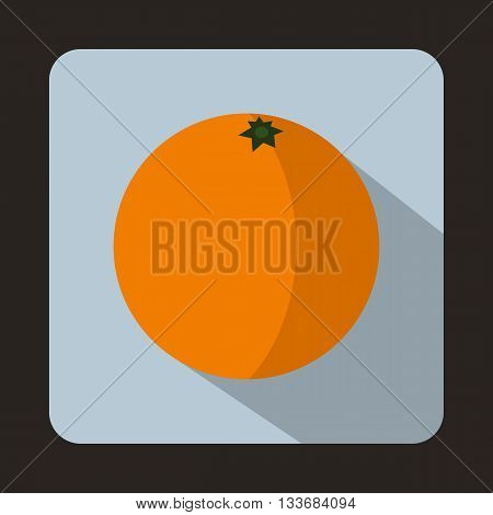 Mandarin icon in flat style on a light blue background